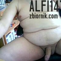 alfi1478